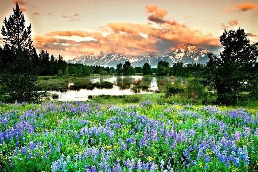 Earth - Spring Earth Landscape Mountain Flower Field Tree Lake Wallpaper