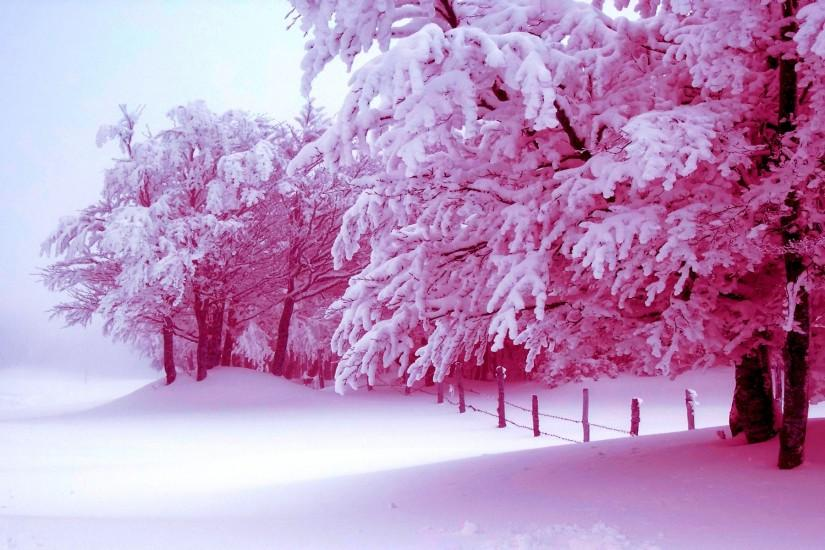 Winter Nature Wallpapers Background Wickedsa Com