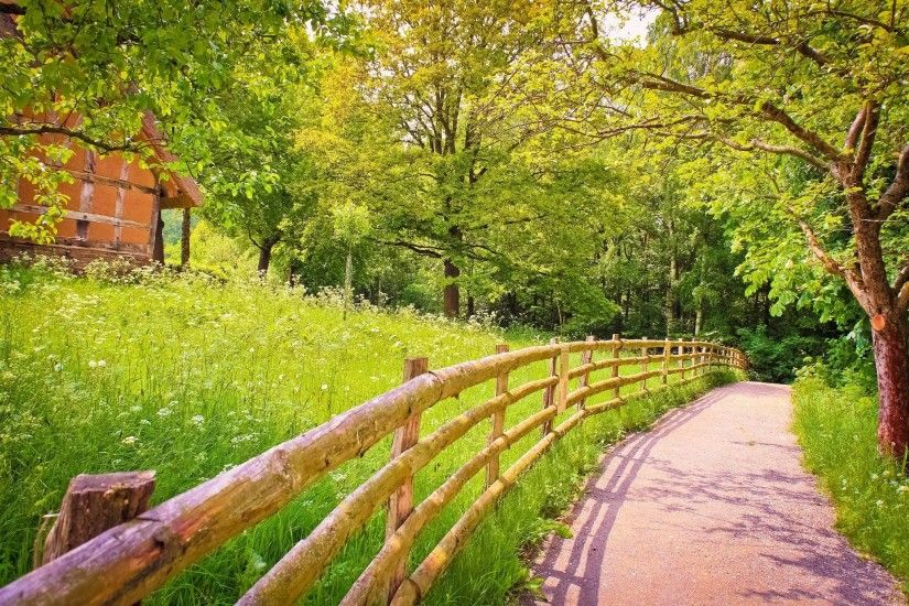 Road shadow fence wood trees grass green house summer nature .
