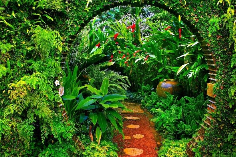 Forest - Jungle Bow Botanical Garden Plants Path Green Forest Desktop  Images for HD 16: