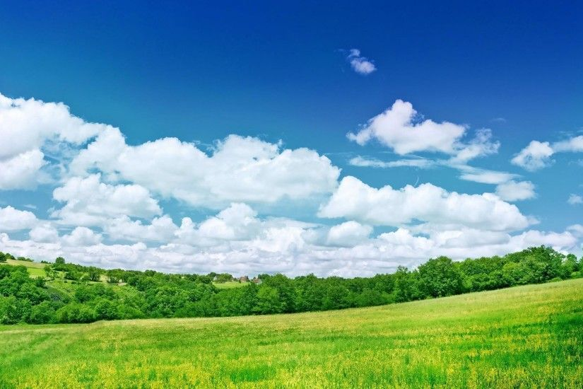 Green Grassland Hd Wallpaper Background Green Grassland Lowrider .