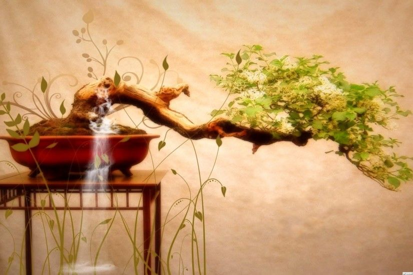 Japanese Bonsai Tree Art