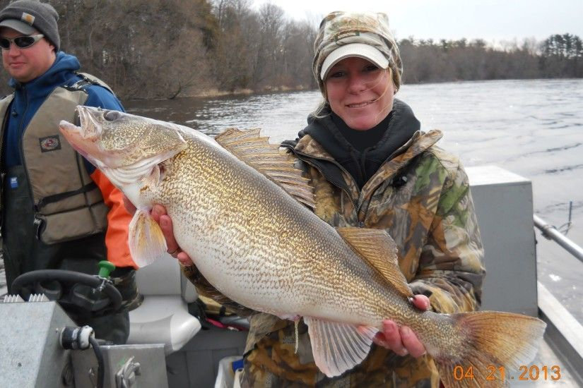 Winnebago System Walleye Spawning report 2013