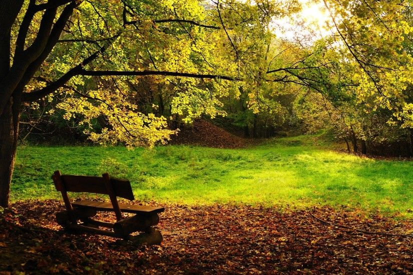 Autumn bench Wallpaper Autumn Nature Wallpapers