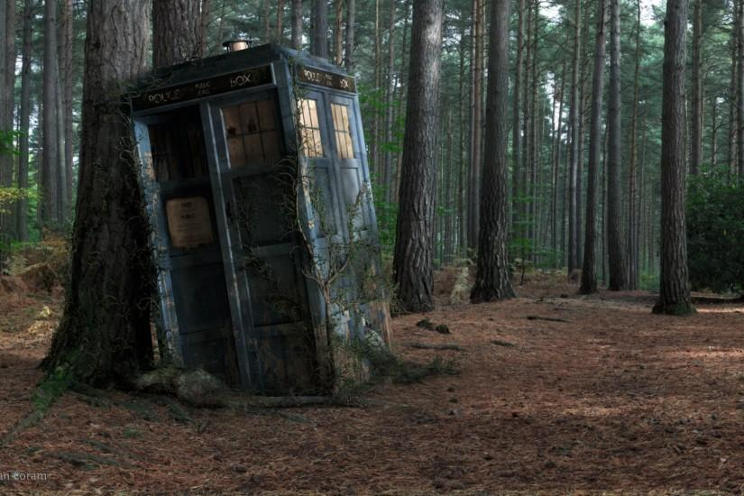 Doctor Who: Damaged Police Box