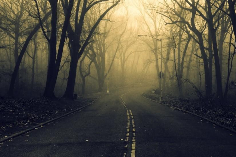 road, Forest, Spooky Wallpaper HD