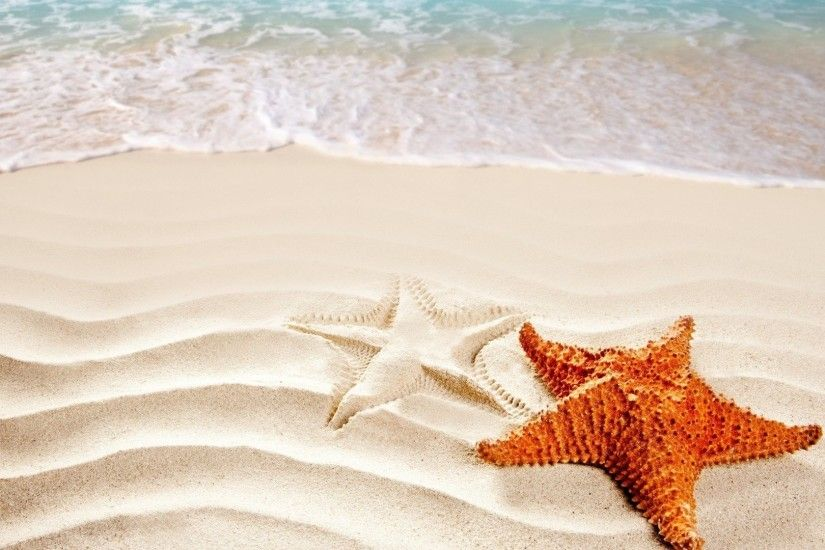 Starfish ocean sea sealife fish bokeh wallpaper | 1920x1080 | 418088 |  WallpaperUP