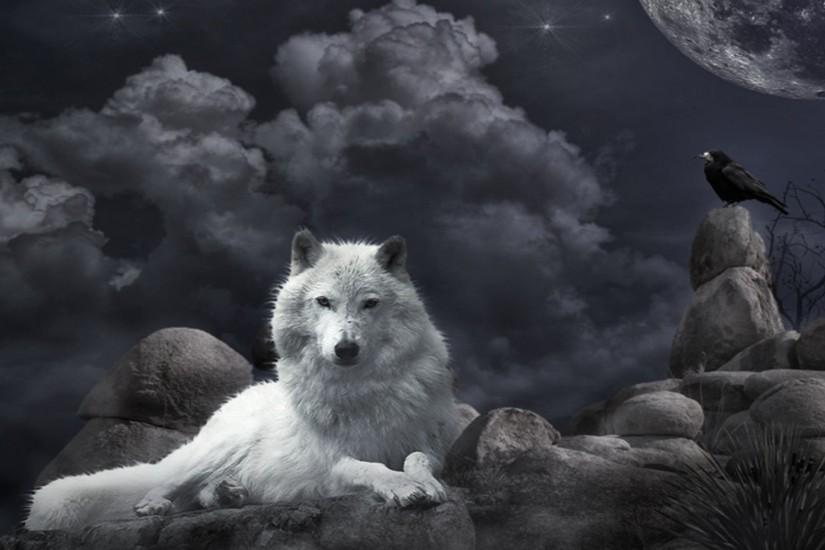 wolf backgrounds 1920x1080 hd