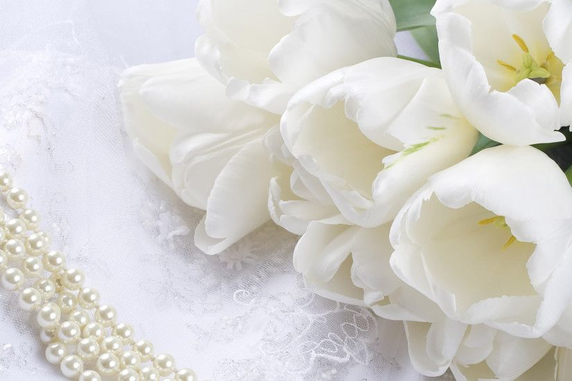 White Rose Wallpapers HD Pictures Flowers One HD Wallpaper 1920×1080 White  Rose Wallpaper (