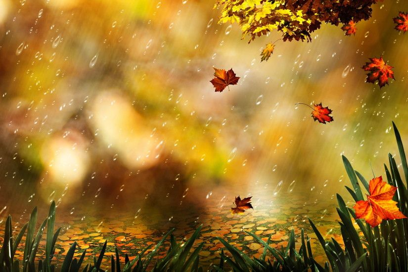 Autumn Art | Wallpaper: Autumn Leaf Artwork