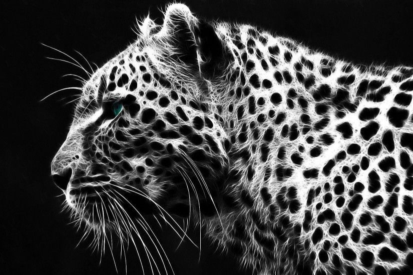 black cheetah wallpapers - DriverLayer Search Engine