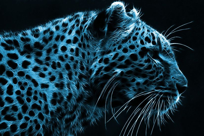 Cheetah Black White Pictures Hd Desktop Wallpaper Insram Photo
