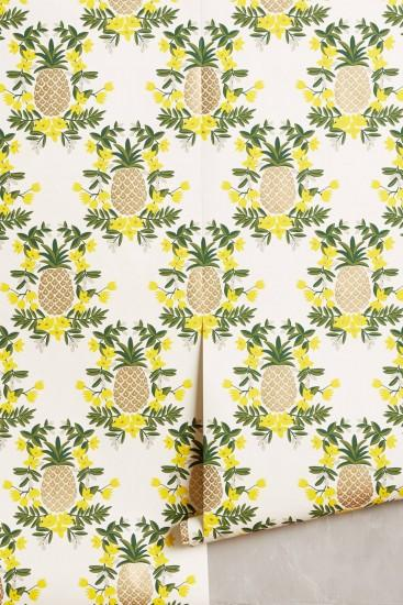 download pineapple wallpaper 1450x2175 720p