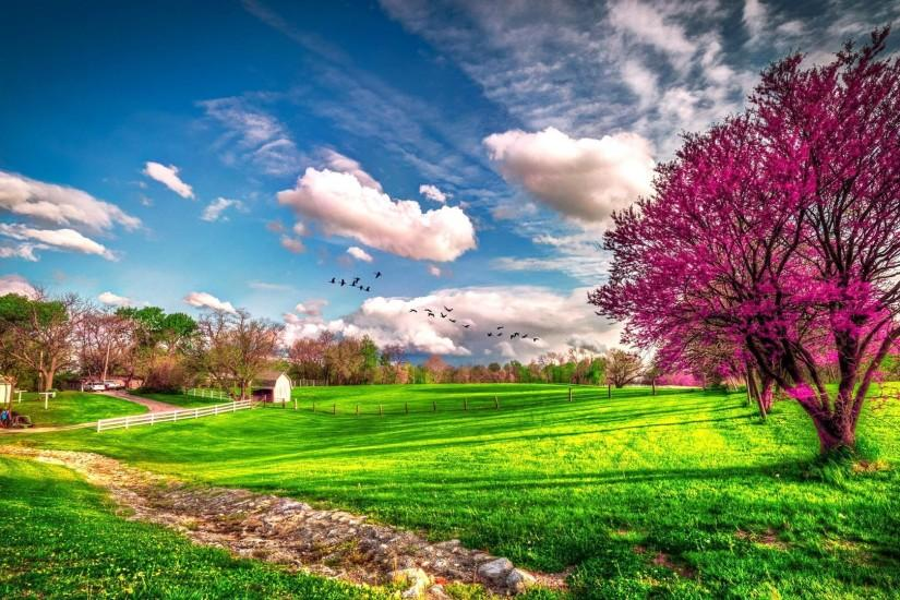 download spring backgrounds 1920x1080