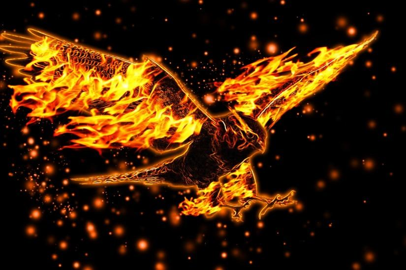 eagle, flight, wings, burning wallpaper and desktop background, hd picture  74982