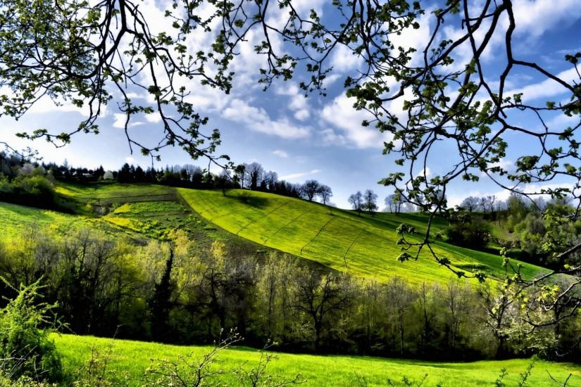 Preview wallpaper spring, fields, trees, greenery 1920x1080