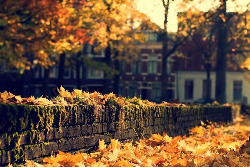 fall wallpapers bricks