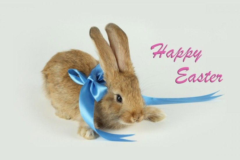 Happy Easter Bunny With Blue Bow