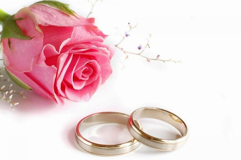 Romantic Pink Rose and Couple Wedding Rings HD Wallpaper