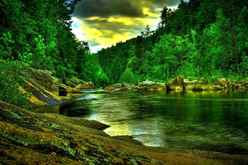 Download Beautiful Green Forest River Wide HD Wallpaper. Search more