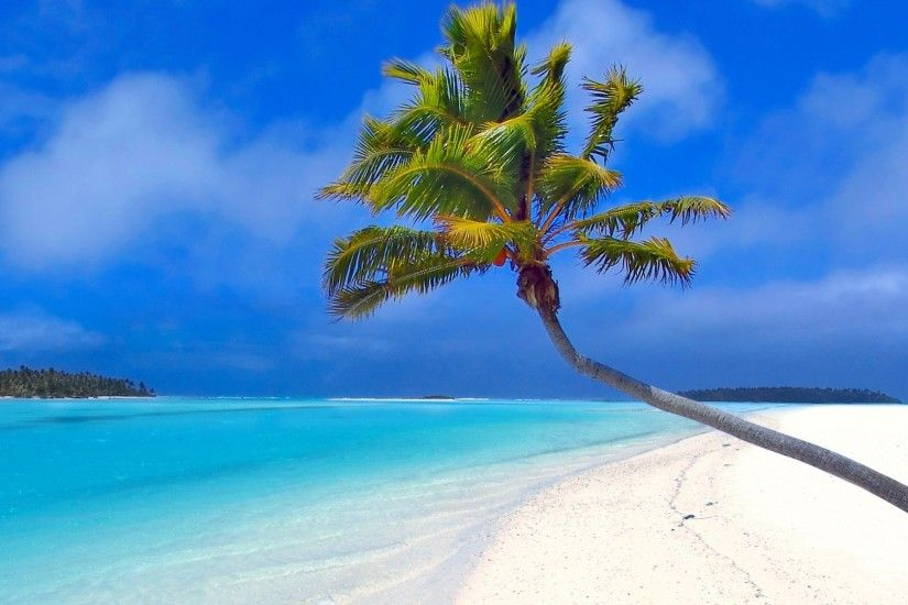 Preview wallpaper maldives, beach, palm trees, sand, sea 1920x1080