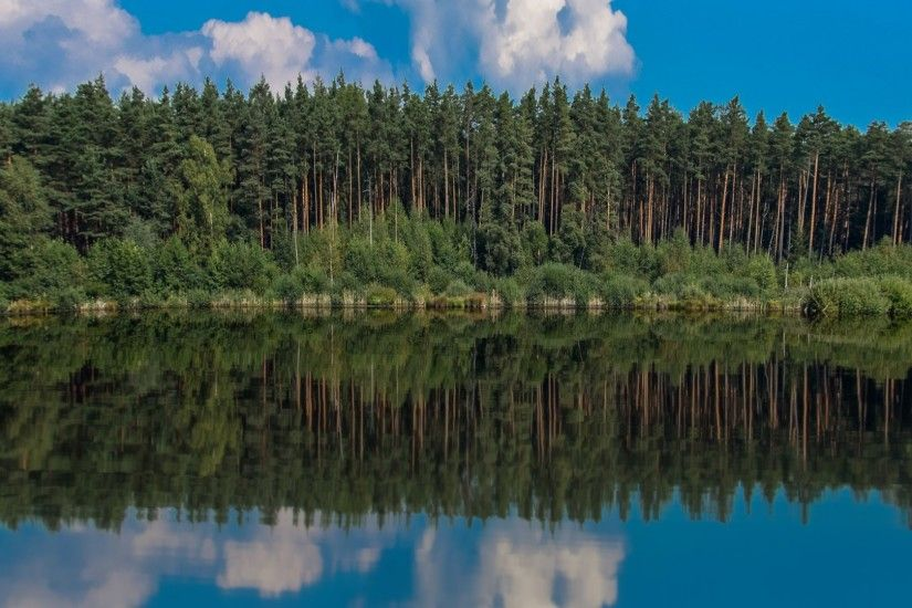 Free Images : landscape, tree, water, nature, marsh, swamp, wilderness,  mountain, sky, meadow, pond, reflection, conifer, lake view, bank, spruce,  ...