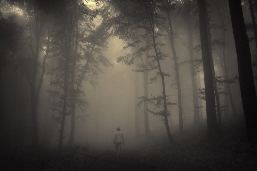 Creepy Tag - Old Landscape Trees Mood Road Forest Lonely Man Misty Creepy  Nature Beautiful Images