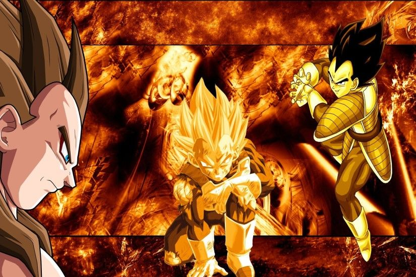 Dragon Ball Z Vegeta 507610