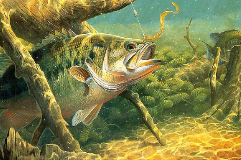 Bass Tag - Sport Lake Underwater River Water Bass Fish Fishes Fishing  Artwork Wallpapers Free Download