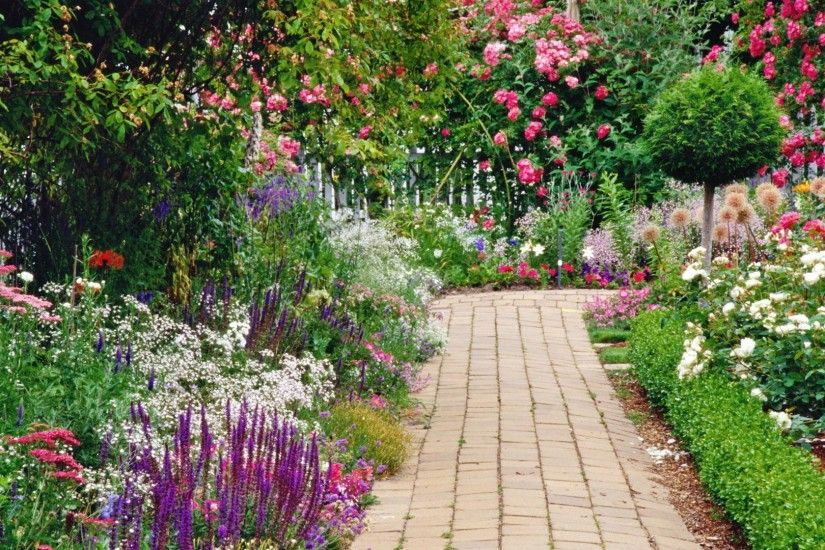 Man Made - Garden Spring Flower Colorful Path Bush Wallpaper