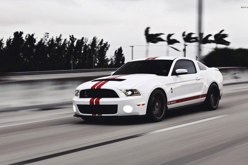 Ford Mustang Gt500 Wallpaper - Image #3363 -