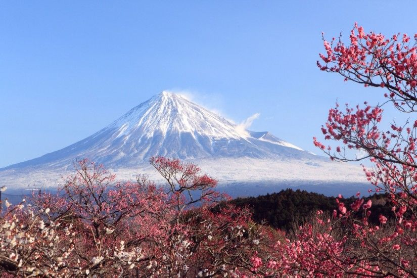 All posts tagged Mount Fuji Japan Wallpapers