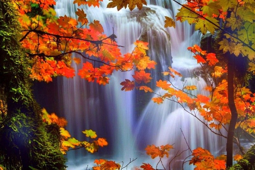 Attractions Tag - Four Waterfalls Love Dreams Trees Stunning Attractions  Falls Seasons Fall Creative Nature Beautiful