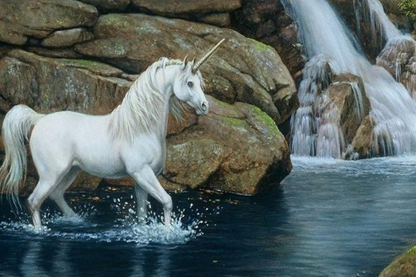 widescreen horse wallpaper 1920x1200 download free