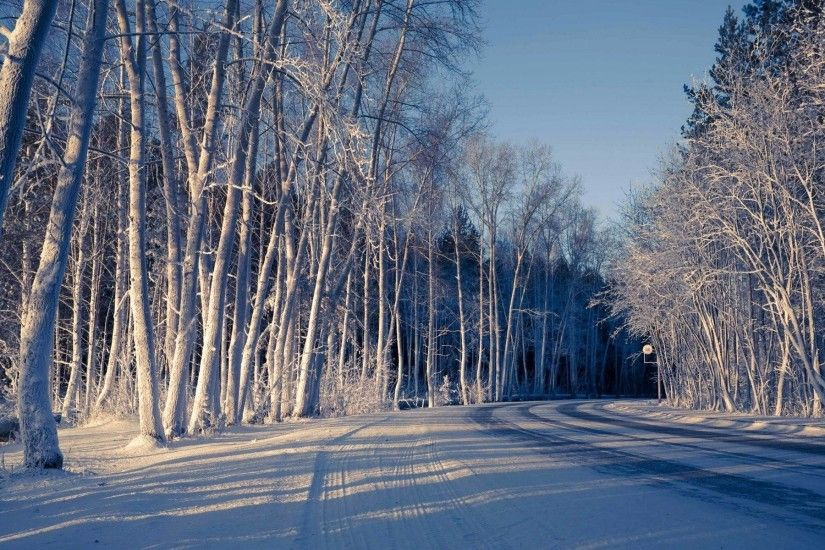 nature snow winter tree road cool shadow winter snow nature road background  wallpaper widescreen full screen