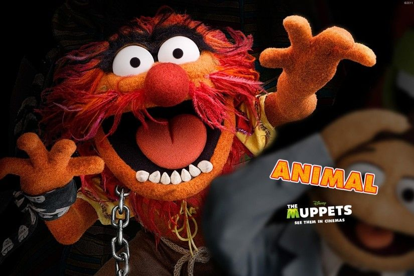 Animal, The Muppets Wallpaper