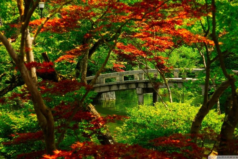 Download Japanese Garden Kyoto Wallpaper 1920X1080 | Wallpoper #441956