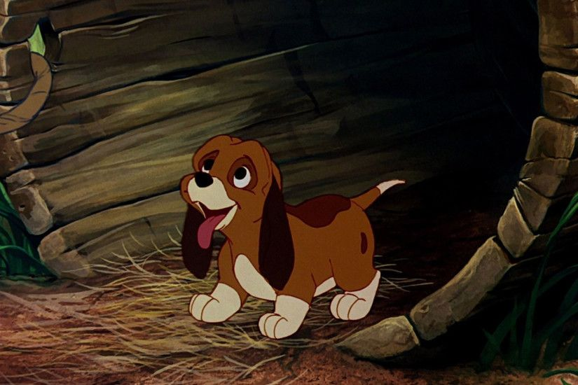 *CASH & COPPER ~ The Fox and the Hound 2, 2006 | THE FOX+THE HOUND,1981+2006  | Pinterest