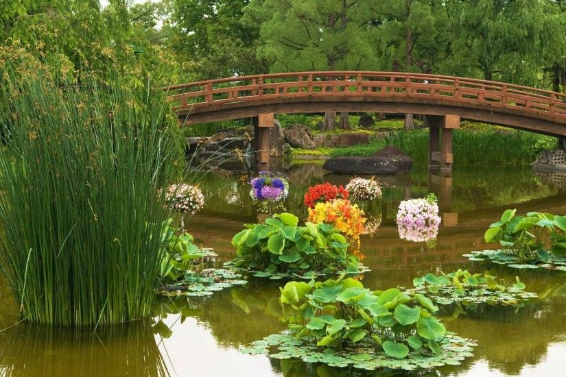 Other - Japanese Garden Flowers Bridge Pond Water Blossoms Plants Trees  Pictures For Desktop for HD
