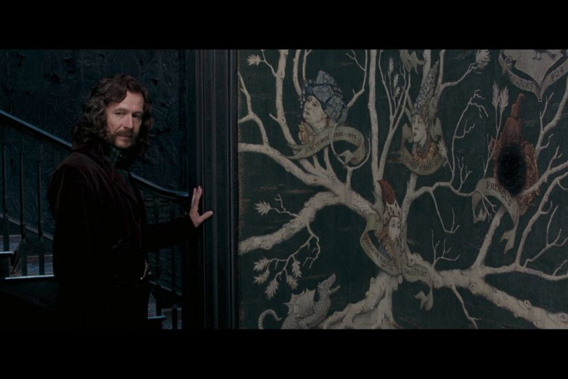 Sirius Black images Order Of The Phoenix HD wallpaper and .