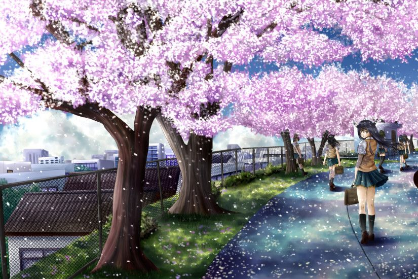 cherry blossoms, ilolamai, seifuku.jpg (1920×1080) | 1アニメ壁紙 | Pinterest | Cherry  blossoms, Anime art and Animation