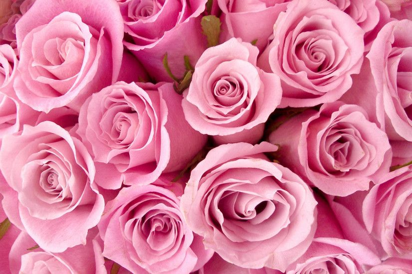 Pink Flower Desktop Wallpapers - THIS Wallpaper ...