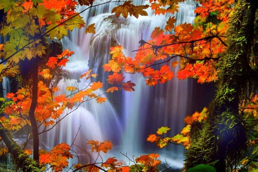 Waterfalls Colors Pre Seasons Dreams Creative Beautiful Trees Fall Stunning  Attractions Autumn Leaves Love Falls Scenery Nature Four Wallpapers For  Desktop ...