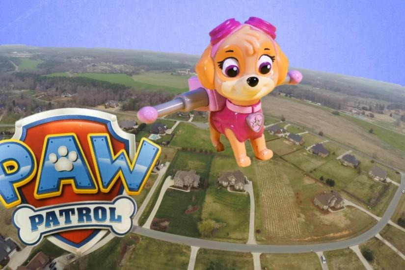 PAW PATROL Nickelodeon Skye Flies in the Air and Saves Paw Patrol a Paw  Patrol Video Parody