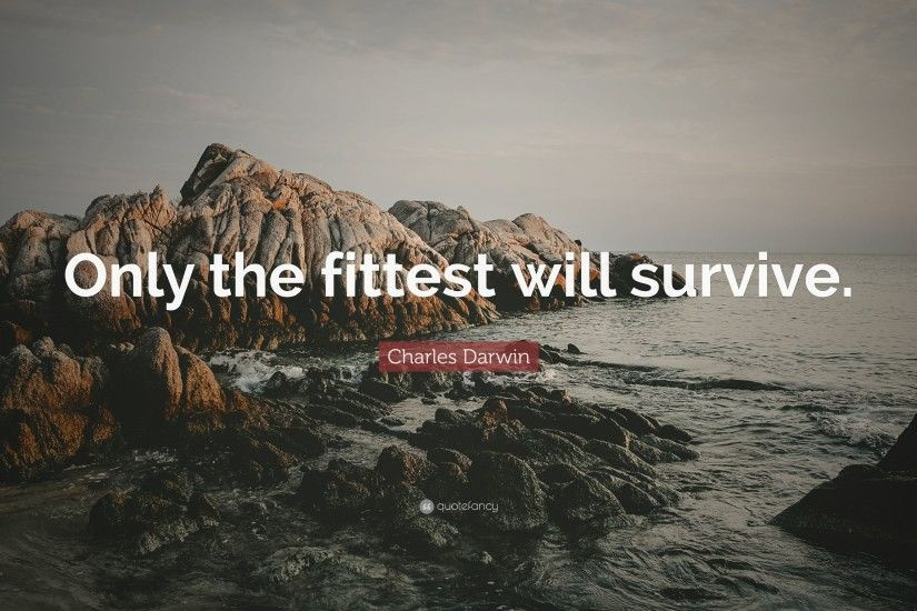 "Charles Darwin Quote: ""Only the fittest will survive."""