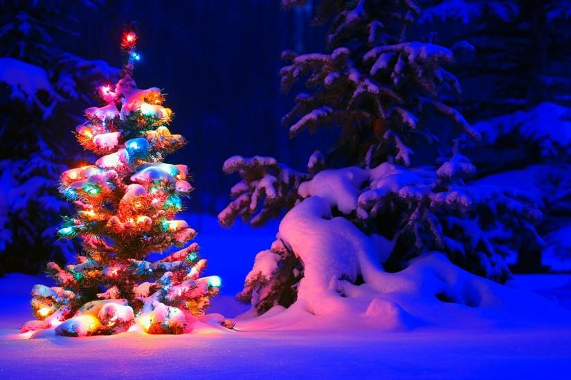 free christmas tree wallpaper 1920x1200 htc