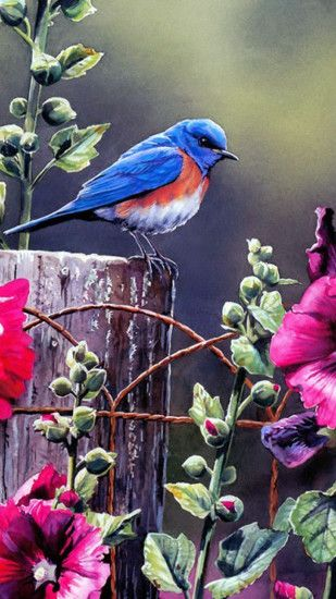 Spring Blue Bird Illustration Flowers Android Wallpaper