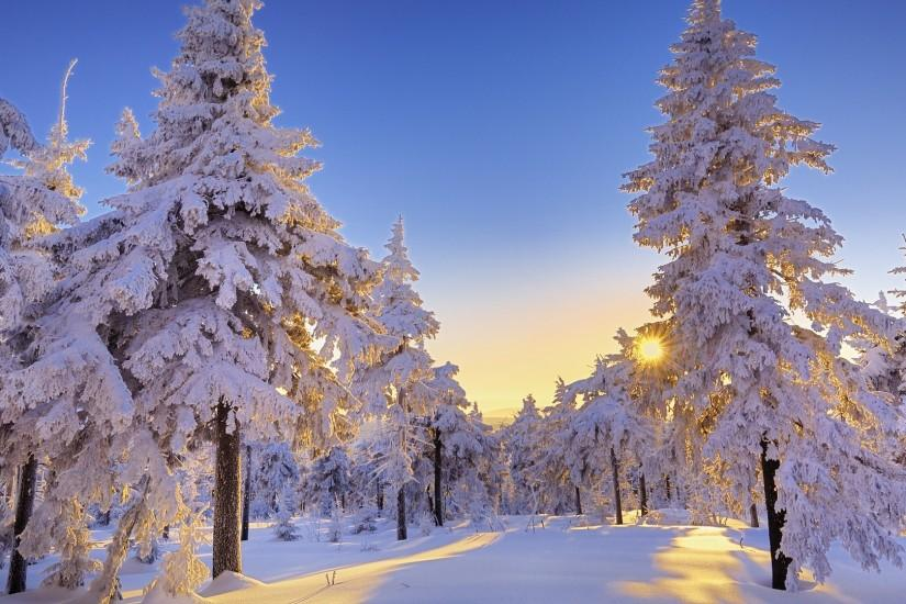 free winter backgrounds 1920x1080 windows 10