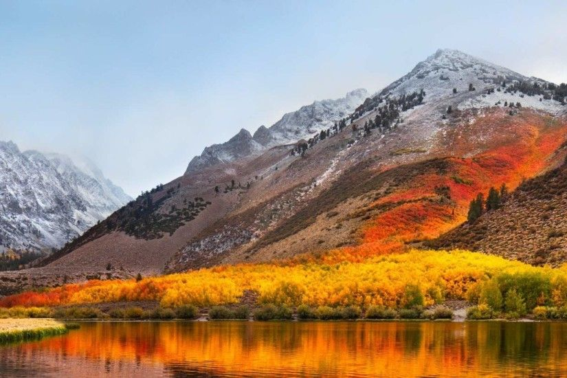 Download the macOS High Sierra Wallpaper and Spruce Up Your Mac