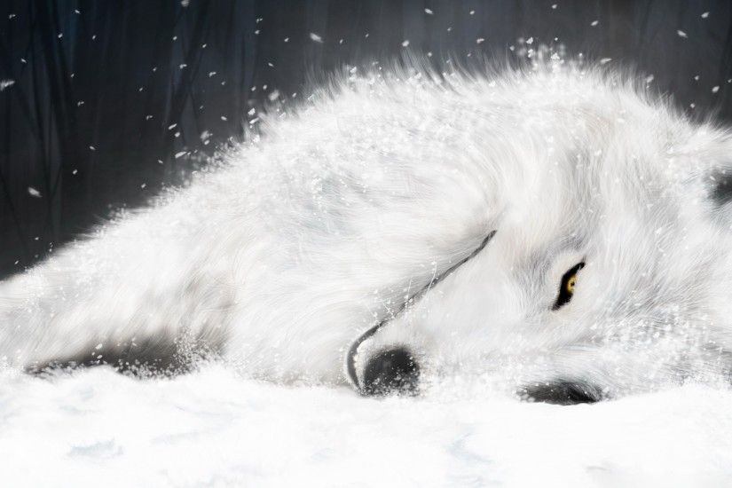 Wolf rain Wallpaper, Wolfs Rain Anime | HD Wallpapers Desktop